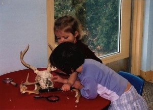 girls examine animal skull with antlers